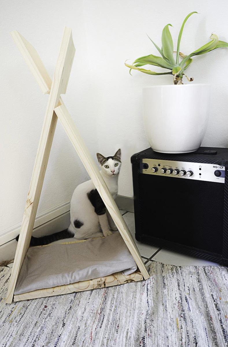 Tipi pour chat posé au sol avec un chat blanc assis derrière