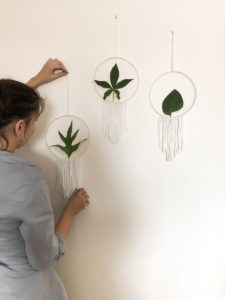 Cercles décoratifs 1