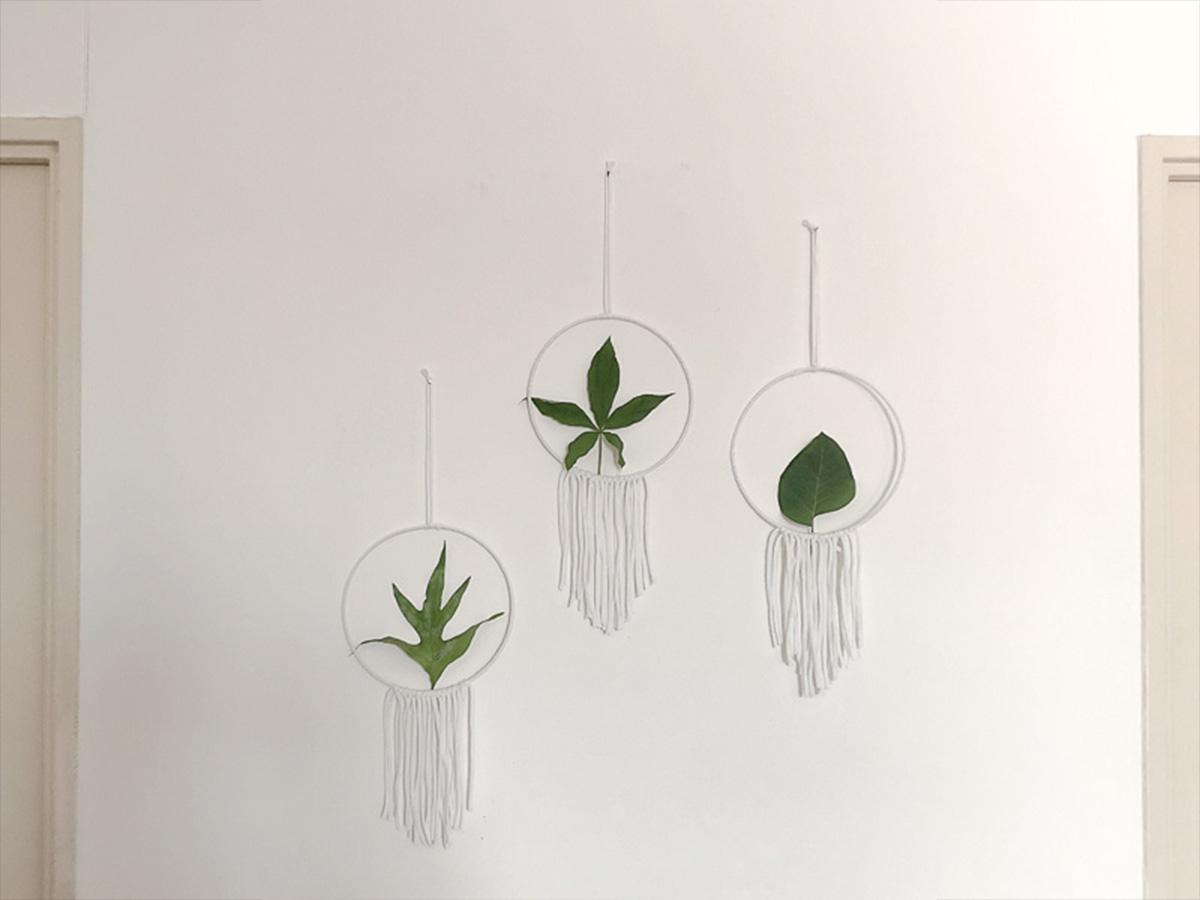 Cercles décoratifs 2