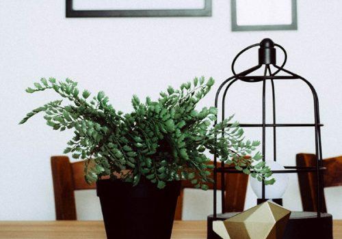 Table de salon en bois pour une décoration écoresponsable et végétale